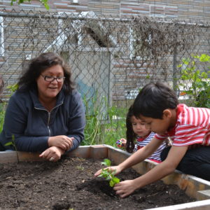 Longtime ally Rosa Perea helps her son and niece plant vegetables in a Chicago community garden. CREDIT: Staff
