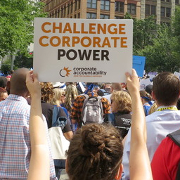 "Protester holding up a sign that says ""Challenge corporate power"""